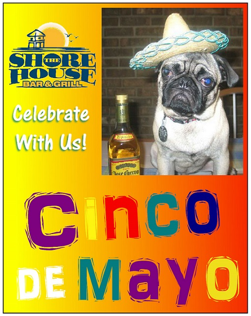 Shore House Cinco De Mayo dog poster 2014 ---